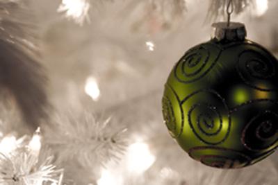Christmas Bulb at FearlessFatLoss.com
