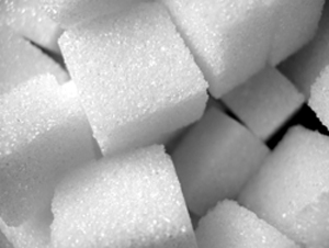 Sugar Cubes | Fearless Fat Loss