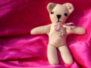 Valentine's Day Teddy instead of chocolate | Fearless Fat Loss