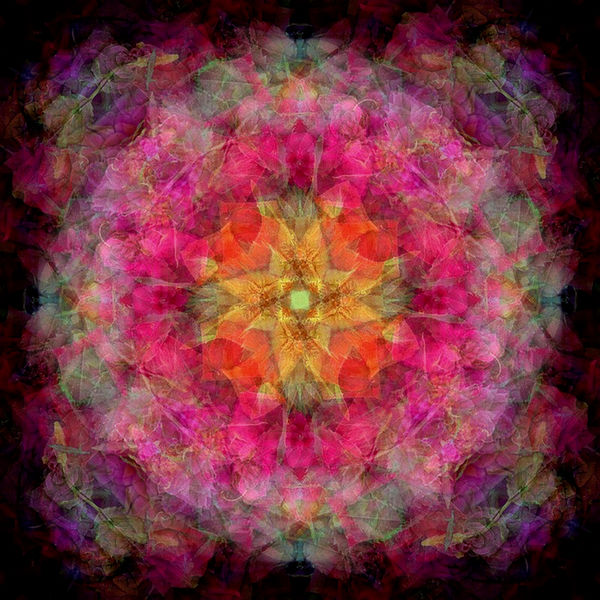 Floral Auras at FearlessFatLoss.com
