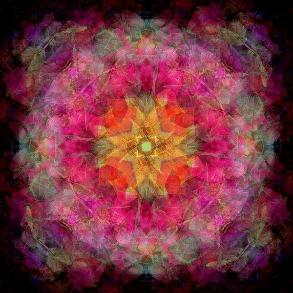 Floral Auras at FearlessFatLoss.com